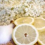 Opskrift på den bedste og nemmeste hjemmelavede hyldeblomstsaft