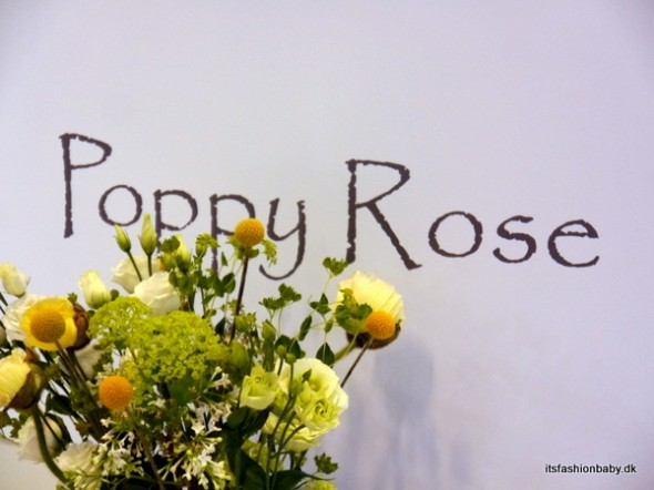 Poppyroseaw14_b