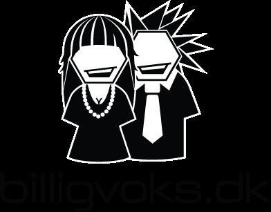 billigvoks_logo
